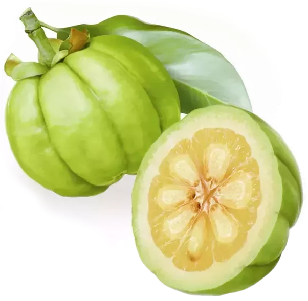 Pure garcinia cambogia and premium cleanse diet