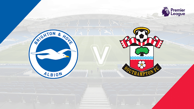 Southampton vs Brighton Full Match & Highlights 31 January 2018