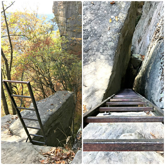 As you get closer to the Diamond Point Overlook on the Endless Wall Trail, you will be met with another small path that leads off from the main trail to another climbing access point with ladders.
