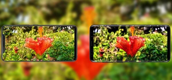 Kamera Xiaomi VS Samsung Bagus Mana