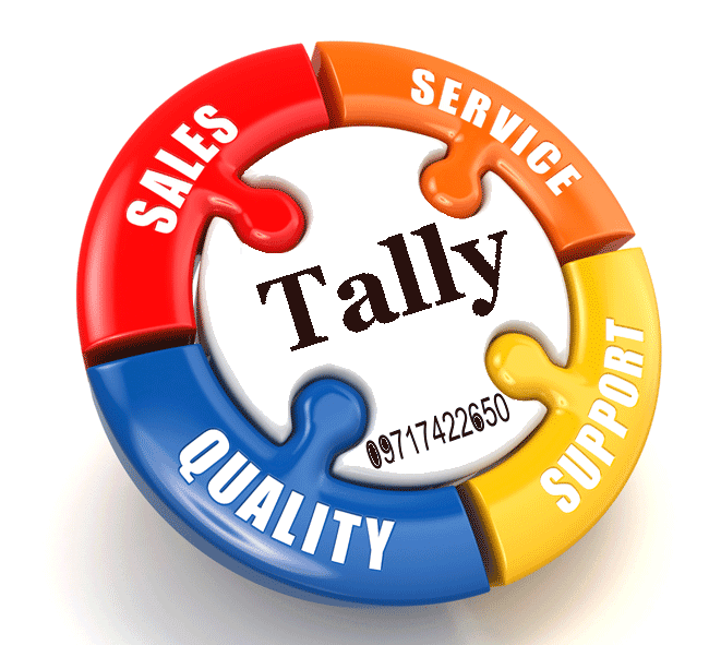 Tally Support Greater Noida
