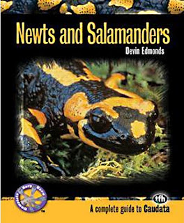 Newts and Salamanders by Devin Edmonds