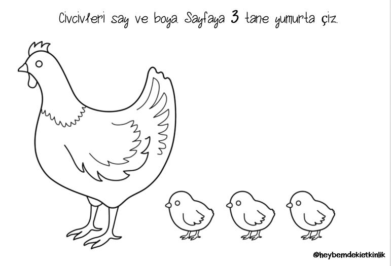 Yumurta Etkinligi