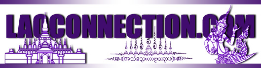 Pretty in purple - Laoconnection banner cover