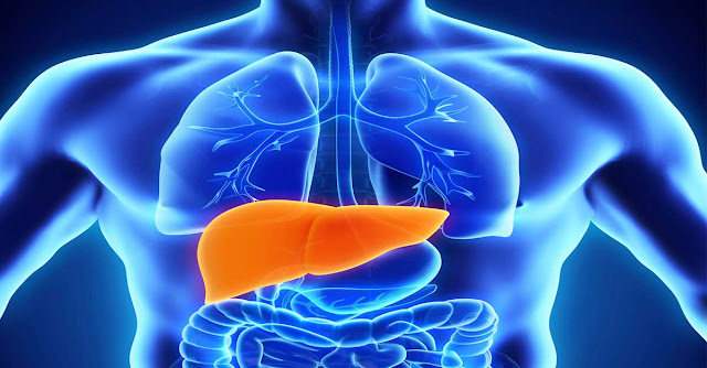 disease-of-liver