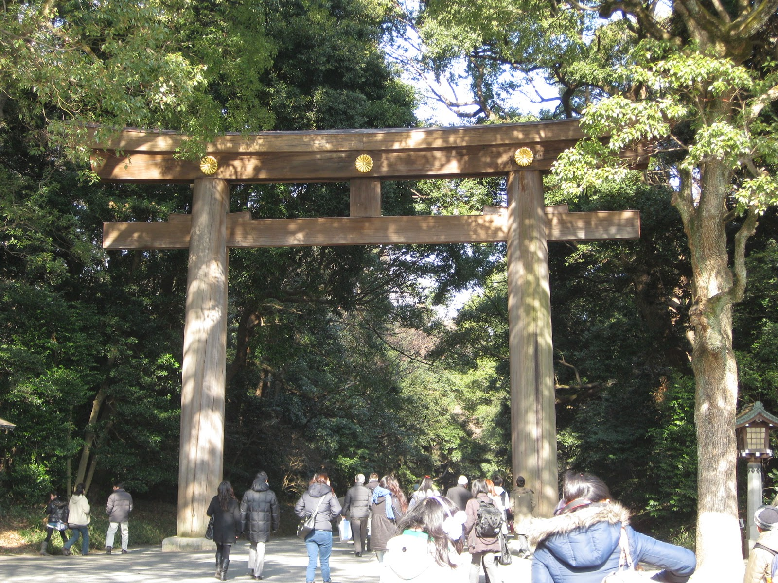 Tokyo - Large torii gate along the pathway to Meiji Shrine