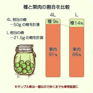 梅の種と果肉の比較グラフ