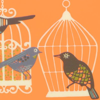 Print Amp Pattern Paperchase Birdcages