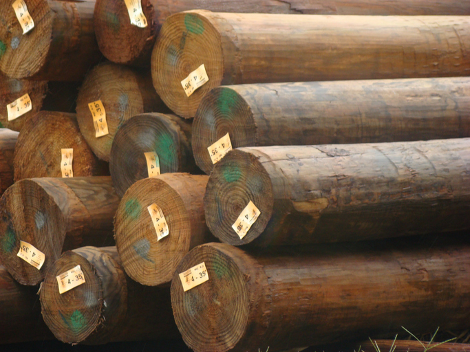 ANSI O5.1 2017 Wood Poles Specifications Dimensions