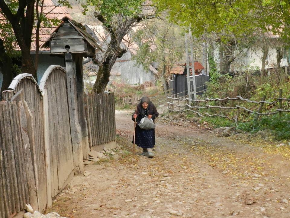 novella, falusi élet, időskori örömök, család, családi élet,