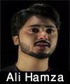 http://www.humaliwalayazadar.com/2017/01/ali-hamza-nohay-2016-to-2018.html