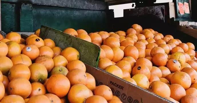 Πρόστιμο σε πλανόδιο: 1.500 ευρώ επειδή πουλούσε… πορτοκάλια