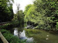 River Ouseburn