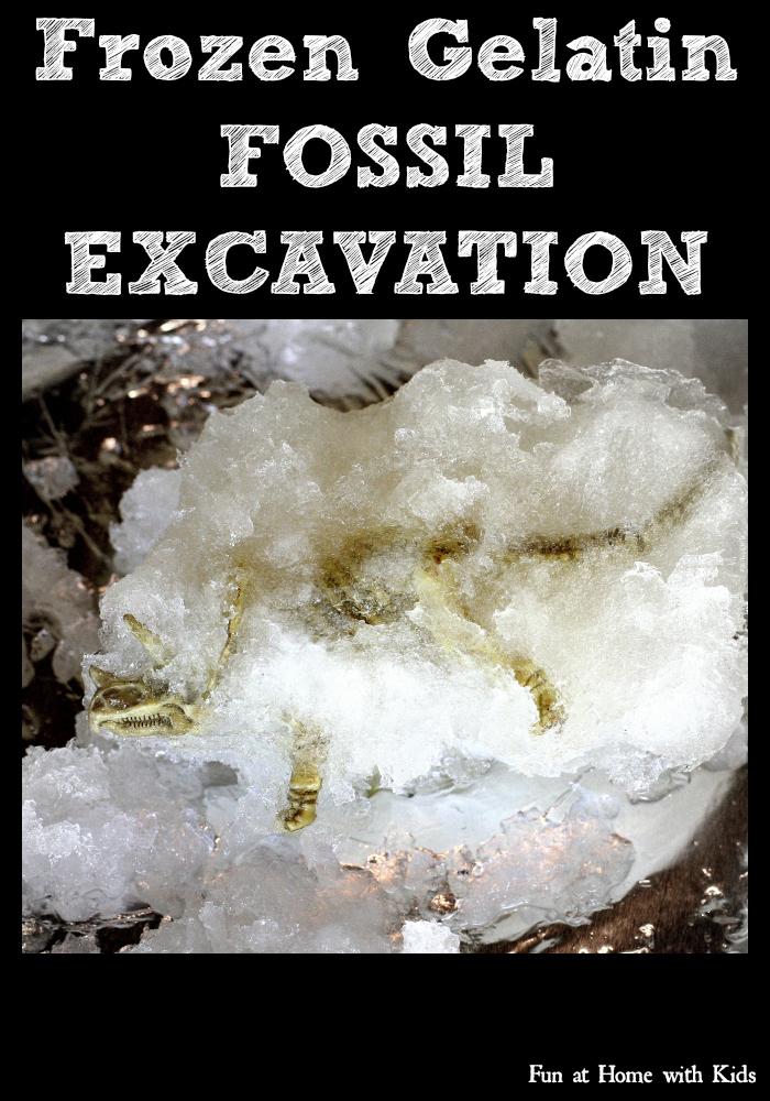 Frozen Gelatin Fossil Excavation And Frozen Gelatin