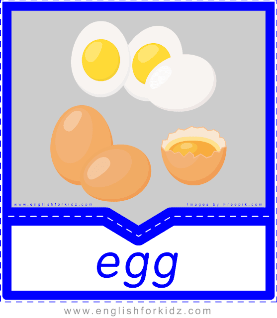 Egg - English food flashcards for ESL students