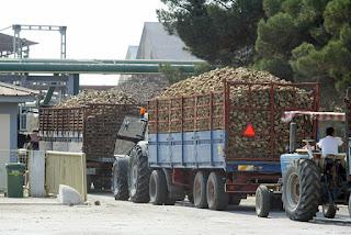 H Koμισιόν καταργεί το καθεστώς ποσοστώσεων στη ζάχαρη στη Ευρώπη μετά από 50 χρόνια