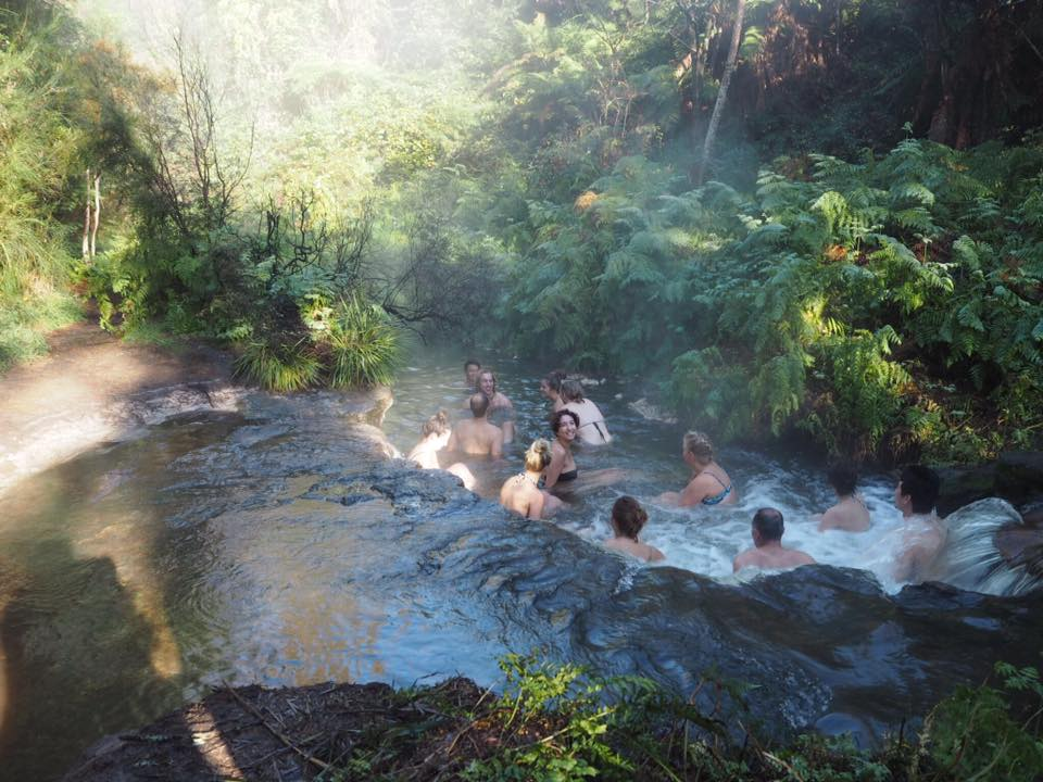 hot springs, new zealand