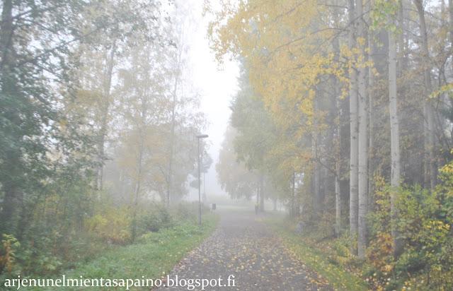 sumu, usva, maisema, valokuvaus, sää, Kuopio, päämäärä, matka, opiskelu