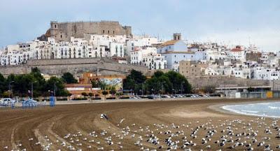 Playa de Peñíscola con gaviotas
