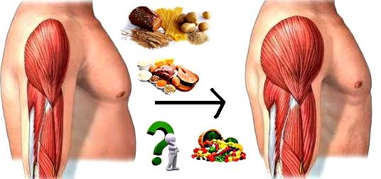 Músculos grandes alimentos nutrición
