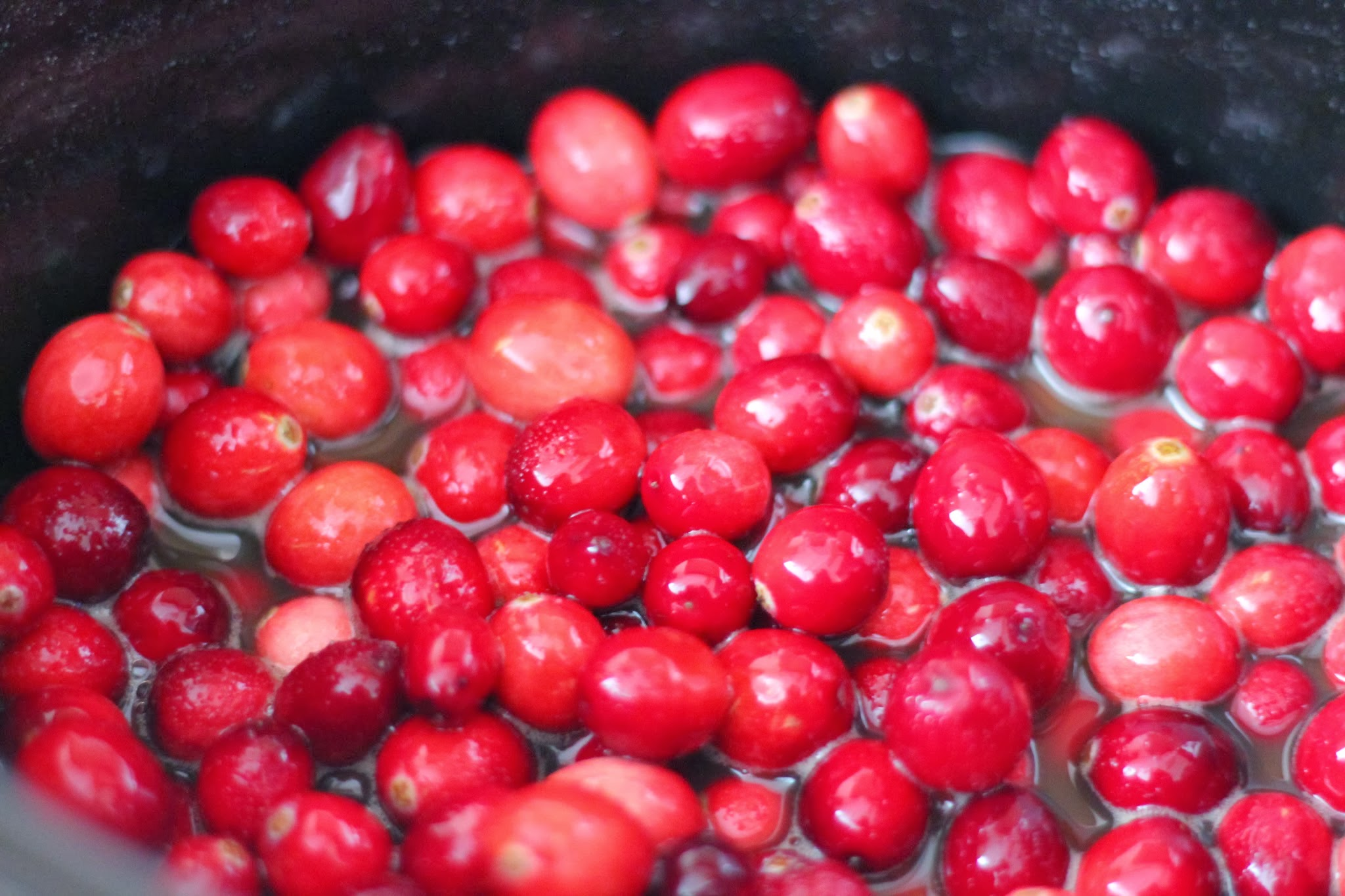 Gourmet cranberry sauce recipe. Ocean spray cranberry sauce recipe. Cranberry sauce recipes. Unique cranberry Sauce recipe. Cranberry sauce recipe with orange juice. Simple cranberry sauce recipe. Festive cranberry sauce recipe. Southern cranberry sauce recipe. Best cranberry compote recipe. #cranberry #sidedish #side #thanksgiving #fall #holiday