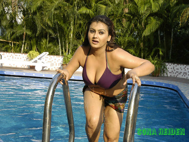 Mallu Actress Sona Hot Photos In Bikini