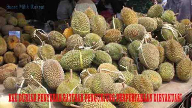 Bau Durian Penyebab Ratusan Pengunjung Perpustakaan Dievakuasi