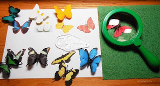 Butterfly Matching Montessori Inspired PDF