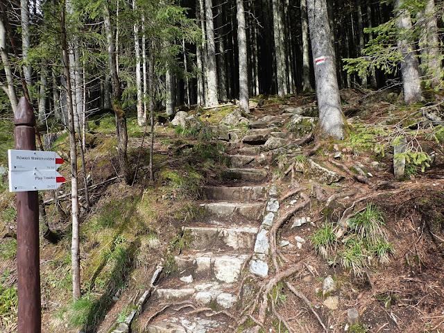 Połączenie szlaku z Cyrhli i asfaltówki na Morskie Oko