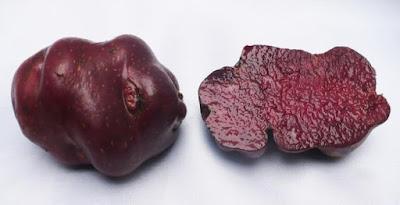 Toro's Blood potato, Potatoes Peru, 3.000 varieties of potatoe, Peru and the potatoe native
