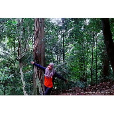 hiking bukit jugra, bukit jugra, hiking bukit jugra 2018, sejarah bukit jugra, jugra hill hiking trail, bukit jugra paragliding price 2018, jugra hill resort, bukit jugra what to do, rumah api bukit jugra, bukit jugra tubestay