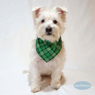 Lucky Irish Plaid Green St Patricks Day Dog Bandana