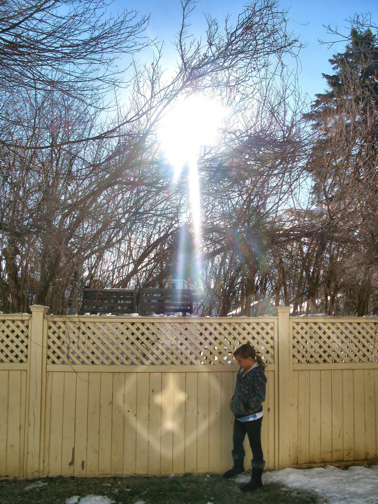 Image result for miracles of light