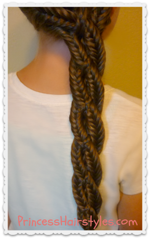 Centipede Braid Hairstyle