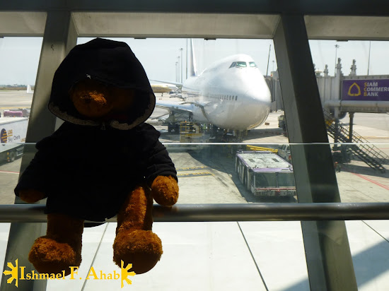 Bear Ahab in Suvarnabhumi Airport