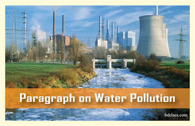 paragraph on water pollution