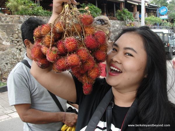 rambutan fruit in Bali