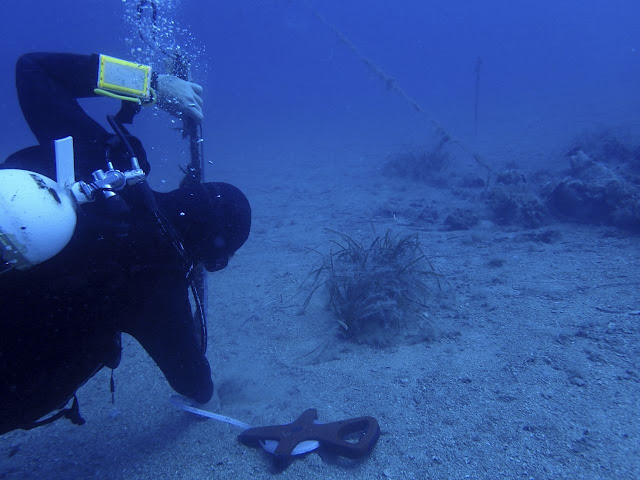 Wrecks, sunken treasures lie under Albania's coastal waters