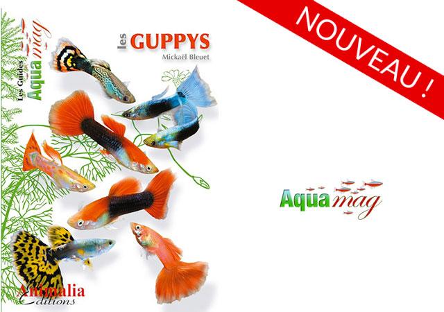 Les Guppys • Mickaël Bleuet