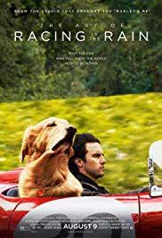 The Art of Racing in the Rain (2019) Online HD (Netu.tv)