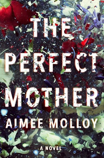 The Perfect Mother, Aimee Molloy, InToriLex
