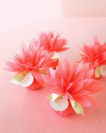 lovely mini pink dahlias