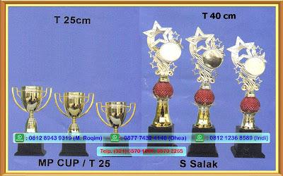 Pabrik Trophy Murah, Pabrik Piala Murah,Jual Piala,jual trophy,duplikat piala,agen piala,grosir piala,toko piala,piala murah,jual piala murah,pabrik piala,asaka tropy , Jual Trophy jual trophy sepak bola