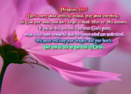 BIBLE VERSES: PHILIPPIANS 4:6-7 |