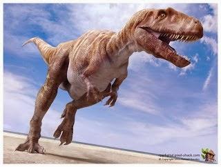 Foto Megalosaurus