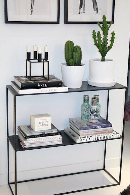 cactus-na-decoração-vasos
