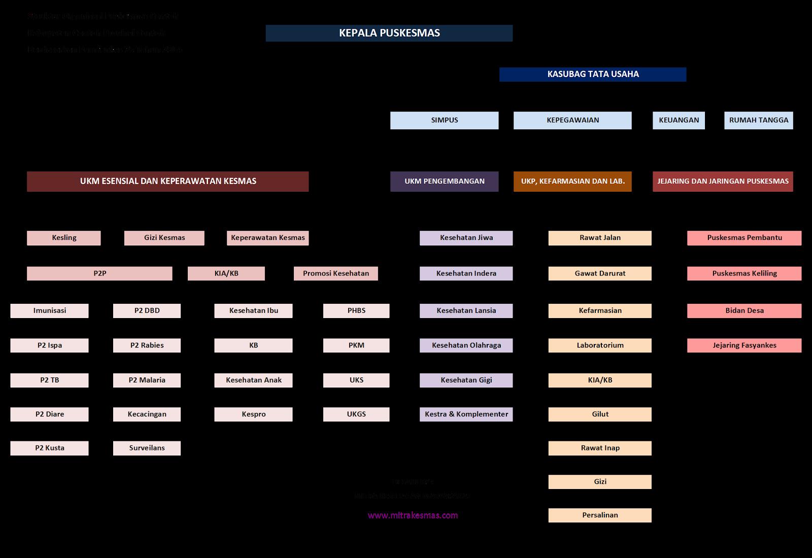 Struktur Organisasi Puskesmas Berdasarkan Permenkes 75 Tahun 2014