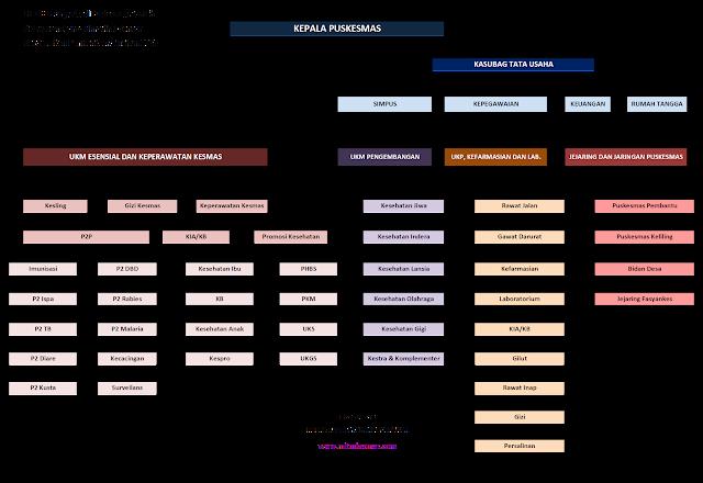 Struktur Organisasi Puskesms Perkotaan dan Perdesaan