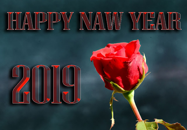 Happy New Year 2019, happy new year 2019 3D images, happy new year 2019 4K images, happy new year 2019 HD images, happy new year 2019 images, happy new year 2019 PNG images, happy new year 2019 PSD images,