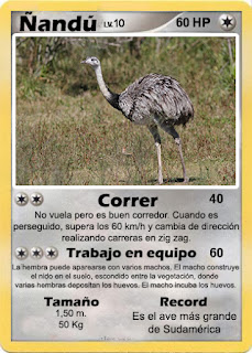 Cartas de Pokemon con Fauna uruguaya (Pradera) - Ñandu